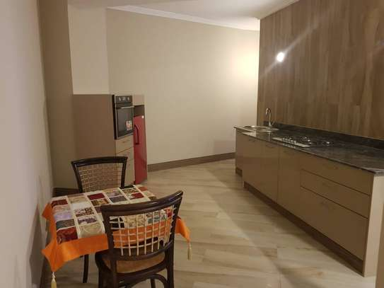Beautiful Modern and Spacious 1 Bedroom Apartments in Msasani Beach image 3