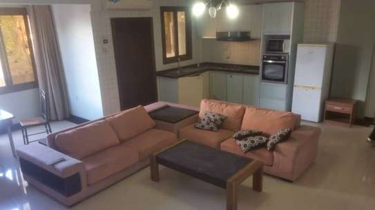 1 bedrooms apartment for rent at upanga image 6