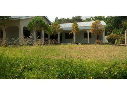 4bed house i deal for office along haileselasie rd masaki $2500pm image 10