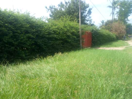 3bedrm house with big compound area in Adaestate to let $1,300 image 3