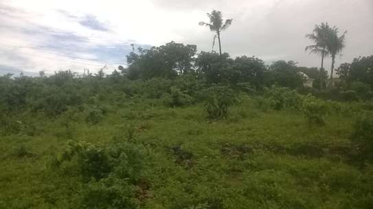 KENDWA SEASIDE PLOT FOR SALE IN ZANZIBAR ISLAND image 5