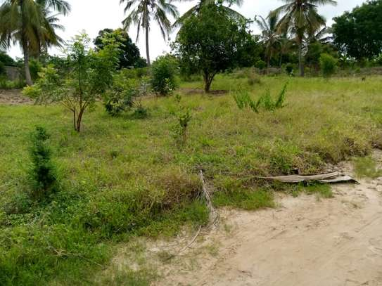 Plot for sale Mivumoni Madale-1.5 km from main road image 5