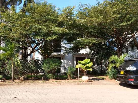 2bed furnished at mikocheni $500pm image 4