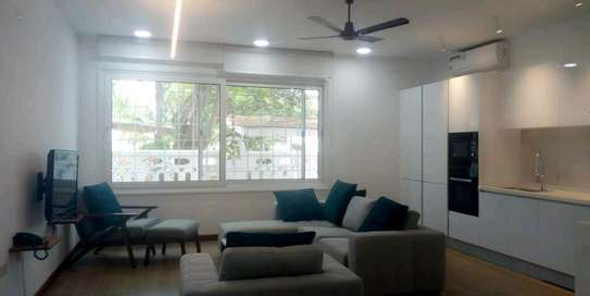 3bdrms full furnished Apartiment for rent located at Masaki opposite shoppers plaza image 2