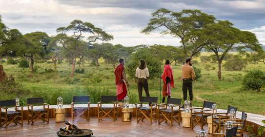 7 Day Tanzania Lodge Safari | One week safari Tanzania image 6