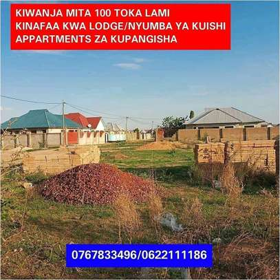 PLOT FOR SALE AT IPAGALA DODOMA image 1