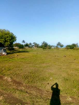 OCEANFRONT LAND FOR SALE IN PEMBA ISLAND-ZANZIBAR image 7