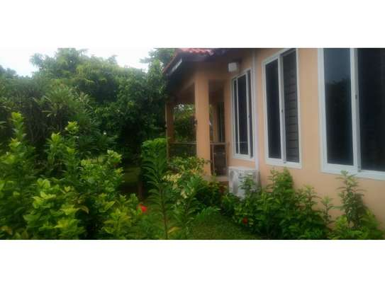 1 Bdrm  Executive villa in the compound at oyster bay $1800pm image 11