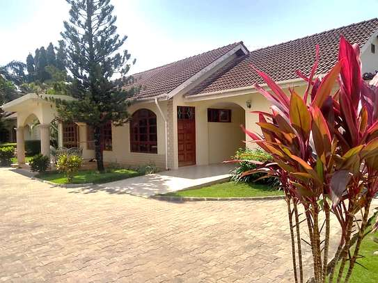 REMARKABLE FOUR VILLAS FOR SALE - JANGWANI BEACH