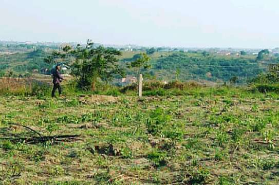 IT'S TIME TO BUY AND OWN KIGAMBONI PLOT AT VERY LOW PRICE image 2
