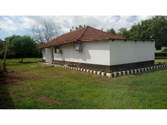 2 bed room house for rent at oyster bay zambia road near kenya embassy image 7