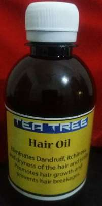 Tea Tree Shampoo and Hair Oil image 2