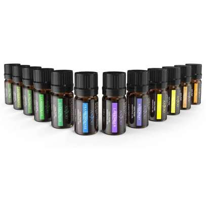 Anjou Essential Oils for Aroma Therapy – 12 Pack (5ml)