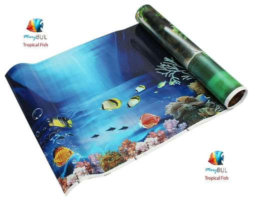 Aquarium Background Poster