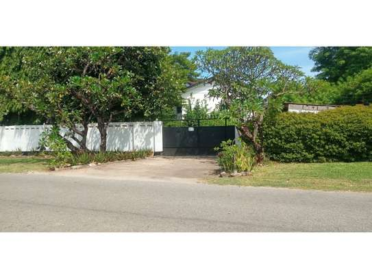 4bed house at masaki with mature garden,pool,generator $5000pm image 11