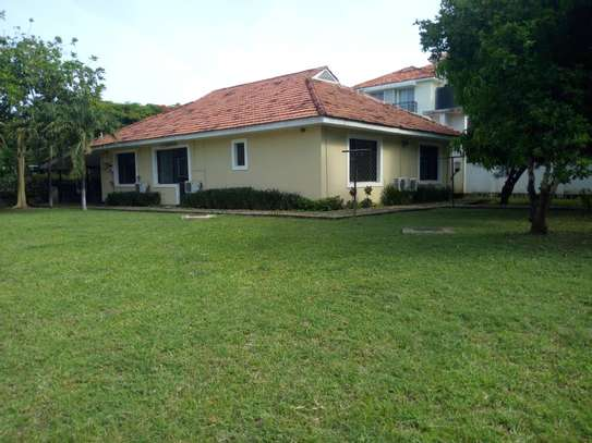 3bed house at oyster bay $1500pm uf image 2