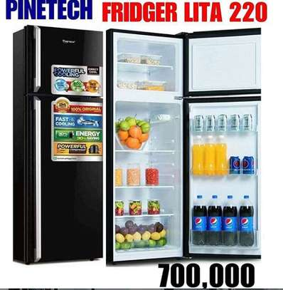 Pinetech  Fridge image 1