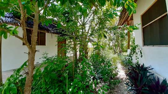 Cozy Property in Jambiani image 5