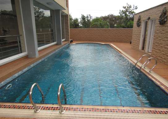1 & 2 Bdrm Luxury Full Furnished Apartments in Oysterbay image 9