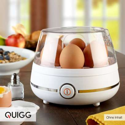 EGG STEAM COOKER image 1