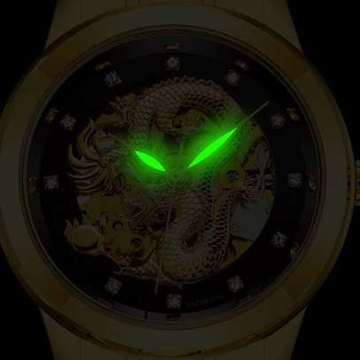 Fully Automatic Mechanical Watch