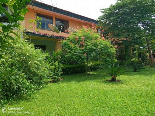 1Bdrm Furnished Apartment at Oysterbay $1000pm