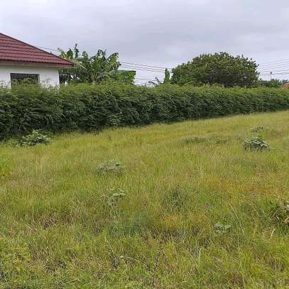 Plots for sale image 6