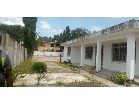 4bed house  wit big compound at mikocheni a $800pm i deal for office image 2