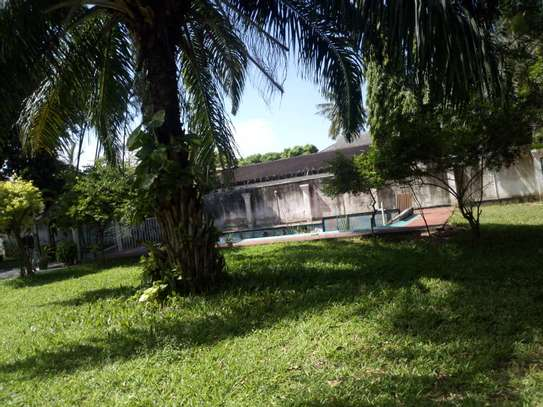 3bed house at regent estate $2000pm image 6