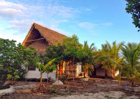 The ideal place to make your dreams true in Jambiani Zanzibar *NEW PRICE*