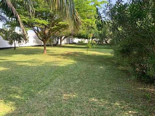 big garden 4bed house at oyster bay along toure drive near coco beach $5500pm image 1