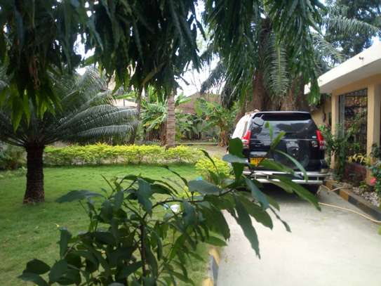 4 bed room big house with nice garden at mikocheni image 3