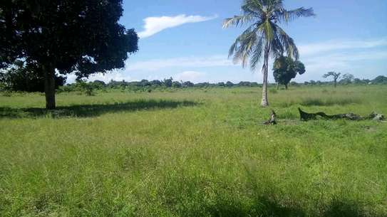 Beach plot for sale...coco beach image 1