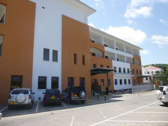 130 - 372 SQM OFFICE THE OYSTERBAY, FOR RENT IN TOURE DRIVE,OYSTERBAY, DAR ES SALAAM image 4