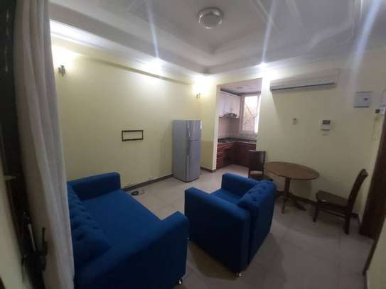 1bhk apart fully furnished at Kinondoni for rent image 2