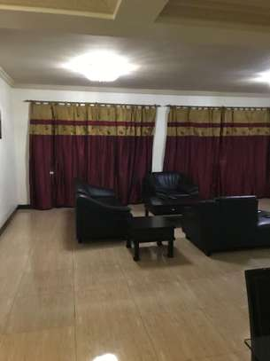 Spacious Apartment of 175Sqm with all Modern Facilities in Upanga image 10