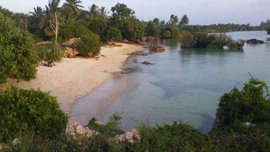 Lovely Beachfront Property on Menai Bay, Unguja Ukuu, Zanzibar image 1