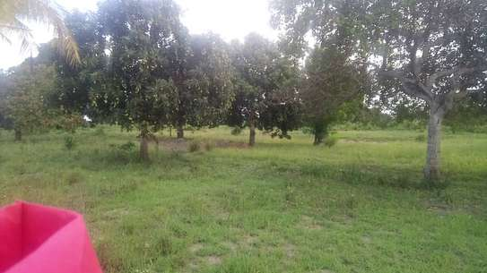 Land for sale very cheap-Kiromo shule junction of bagamoyo image 2