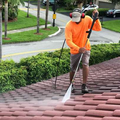 Roof cleaning Services image 1