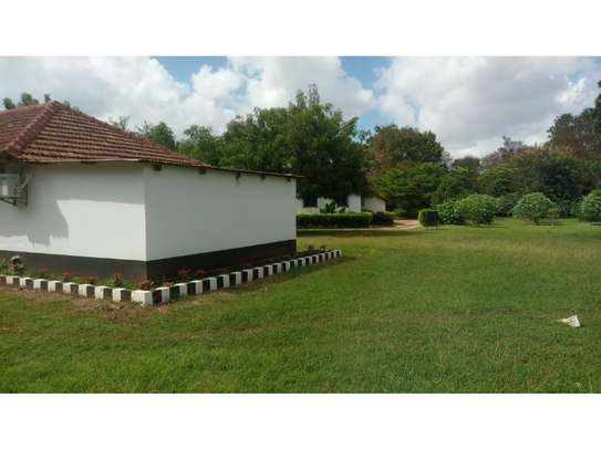 2 bed room house for rent at oyster bay zambia road near kenya embassy image 5