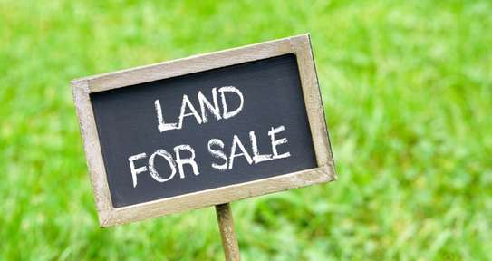 600 Sqm Land in Ukuni Area  Bagamoyo