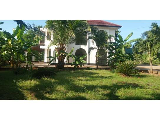 4bed house at oyster bay$1500 image 3