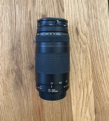 Canon EF 75-300mm Telephoto Zoom Lens