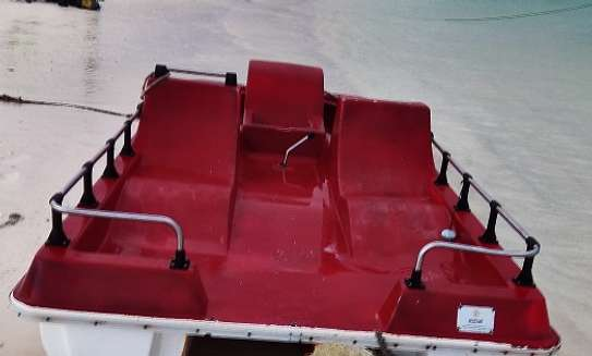 Pedalo Watercraft for sale image 5