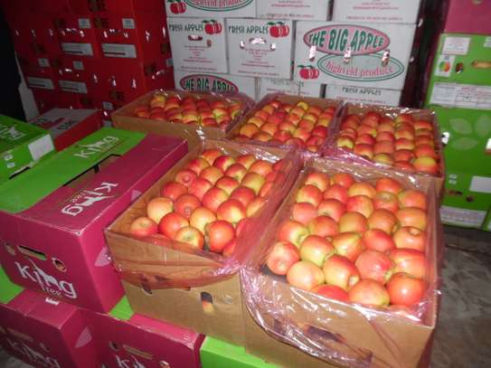 FRESH APPLE FRUITS FROM SOUTH AFRICA
