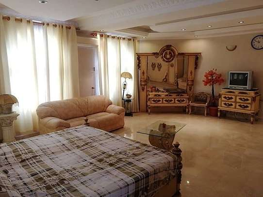 9 BEDROOMS FULLYFURNISHED HOUSE FOR RENT image 2