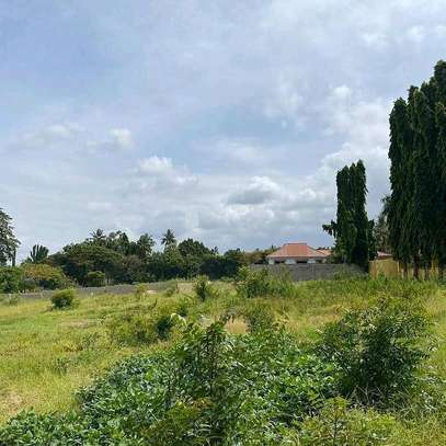 Plot for sale location sala sala image 4