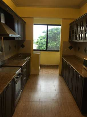 3 bed room excutive apartment for rent at upanga image 5