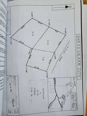 big beach plot 14 acres for sale at gezaulole kigamboni image 7