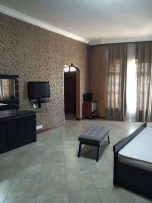 8 Bdrm Fully furnished House at Burka in Arusha image 7